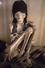 Chinchorro Mummies