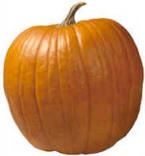 The Perfect Pumpkin!